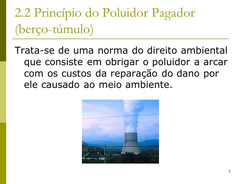 5 2.2 Princípio do Poluidor Pagador (berço-túmulo) Trata-se de uma norma do direito ambiental que consiste em obrigar o poluidor a arcar com os custos