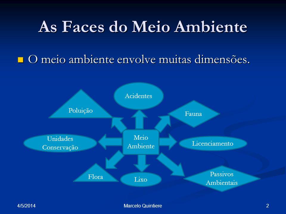As Faces do Meio Ambiente O meio ambiente envolve muitas dimensões. O meio ambiente envolve muitas dimensões. 4/5/2014 2Marcelo Quintiere Meio Ambient