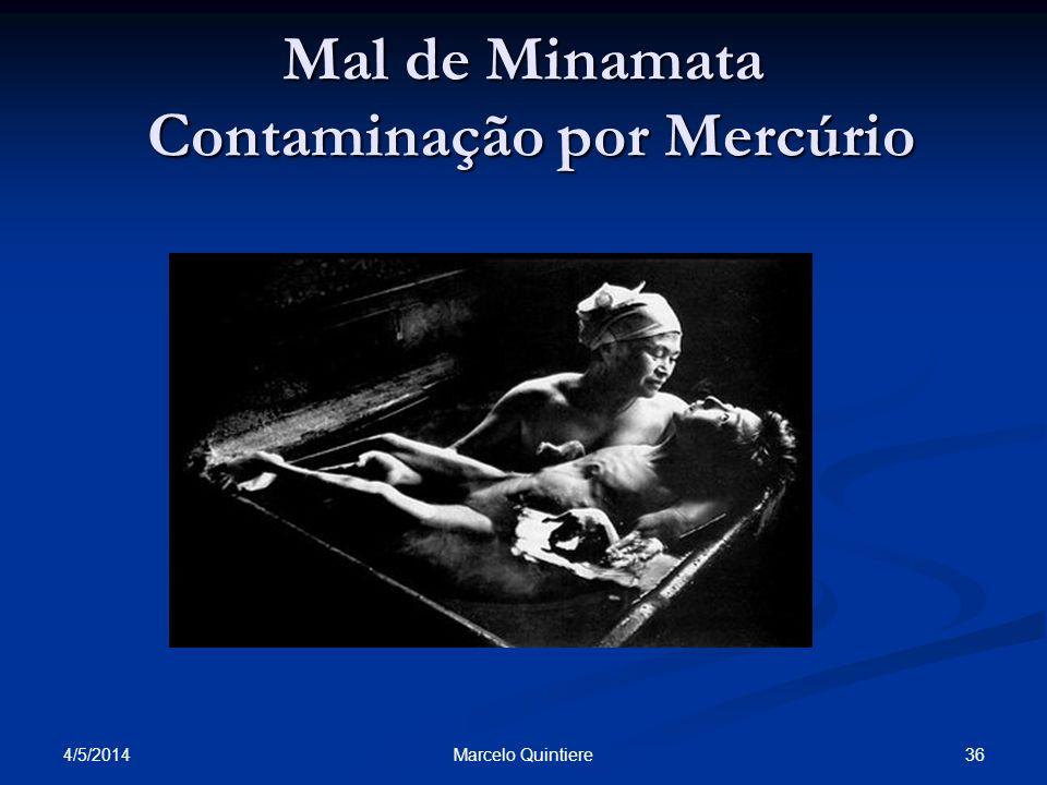 Mal de Minamata Contaminação por Mercúrio 4/5/2014 36Marcelo Quintiere