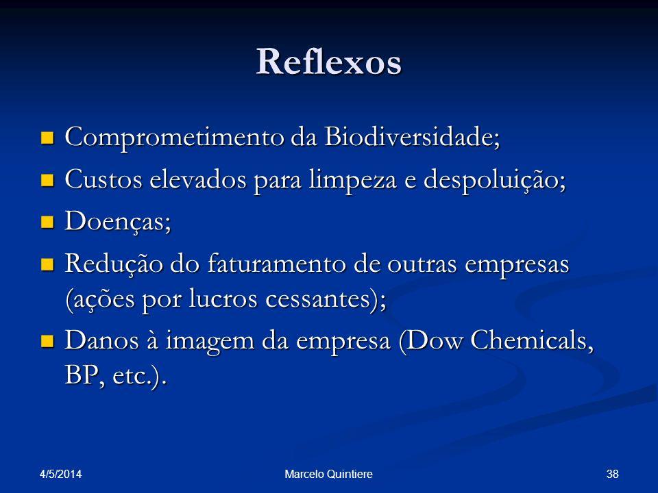 4/5/2014 38Marcelo Quintiere Reflexos Comprometimento da Biodiversidade; Comprometimento da Biodiversidade; Custos elevados para limpeza e despoluição