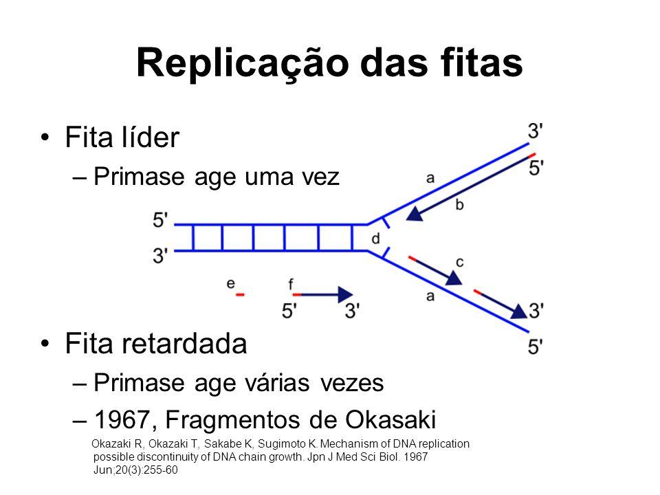 Replicação das fitas Fita líder –Primase age uma vez Fita retardada –Primase age várias vezes –1967, Fragmentos de Okasaki Okazaki R, Okazaki T, Sakabe K, Sugimoto K.