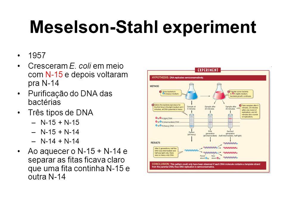 Meselson-Stahl experiment 1957 Cresceram E.