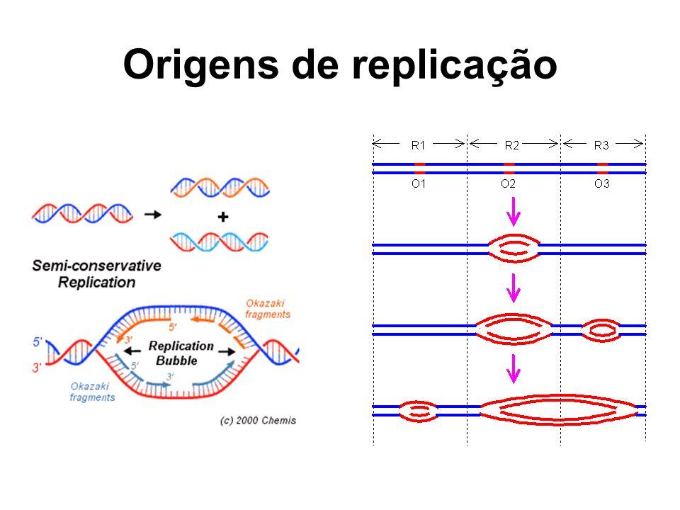 Origens de replicação