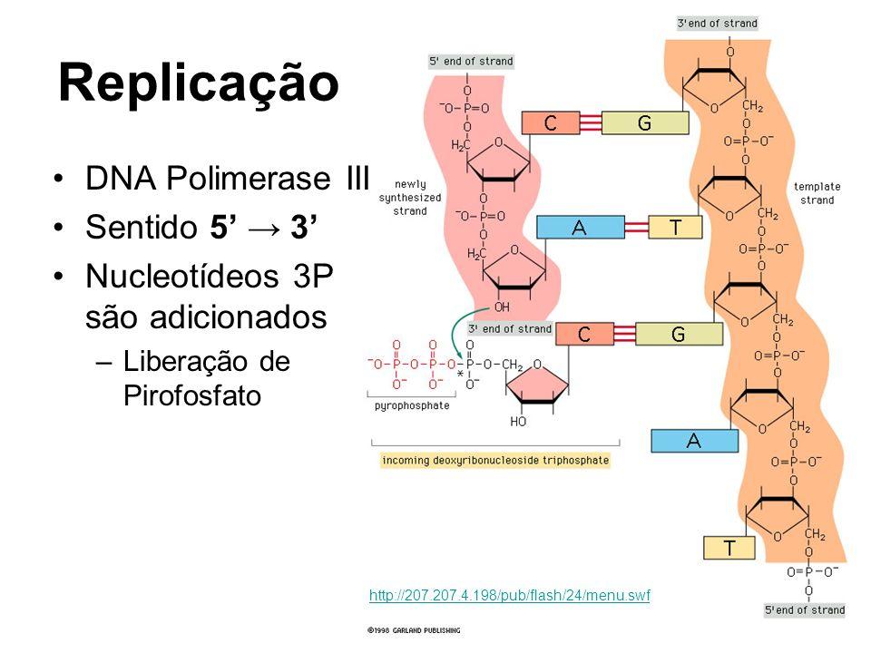 Replicação DNA Polimerase III Sentido 5 3 Nucleotídeos 3P são adicionados –Liberação de Pirofosfato http://207.207.4.198/pub/flash/24/menu.swf