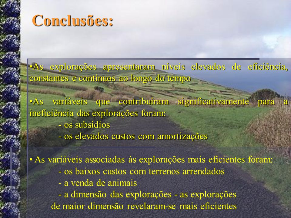 Conclusões: As explorações apresentaram níveis elevados de eficiência, constantes e contínuos ao longo do tempo As variáveis que contribuíram signific