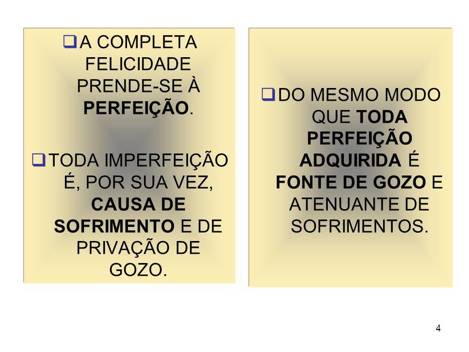 4 A COMPLETA FELICIDADE PRENDE-SE À PERFEIÇÃO. TODA IMPERFEIÇÃO É, POR SUA VEZ, CAUSA DE SOFRIMENTO E DE PRIVAÇÃO DE GOZO. DO MESMO MODO QUE TODA PERF