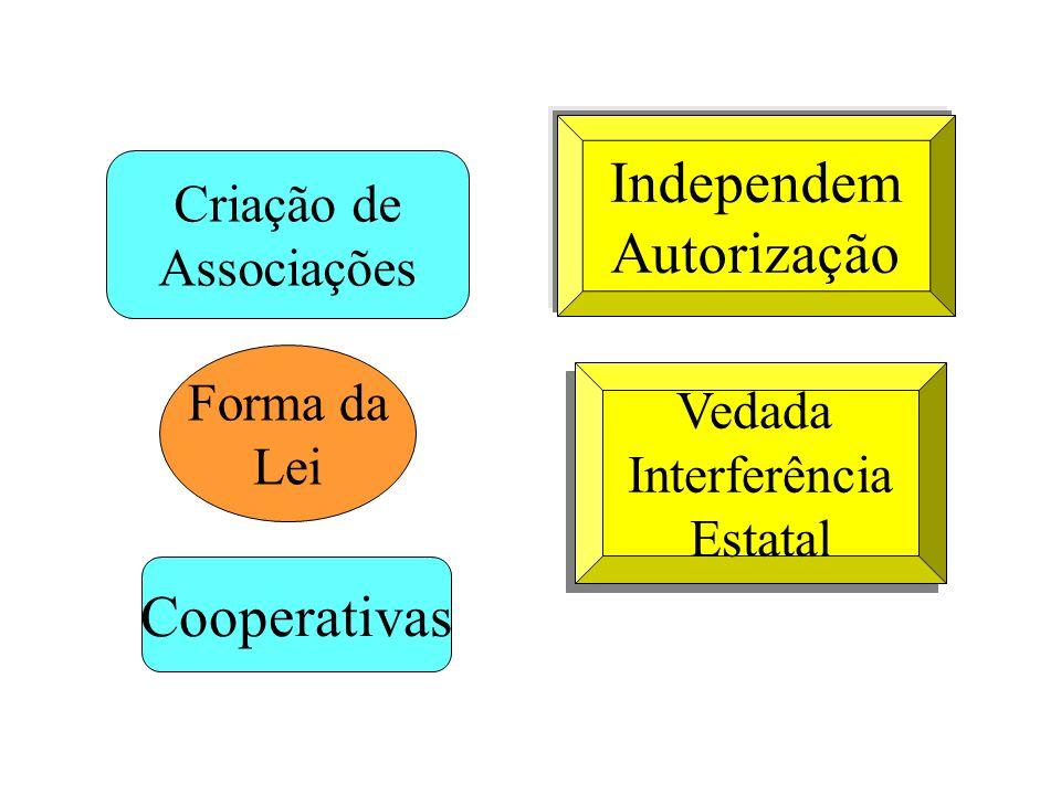 Criação de Associações Forma da Lei Cooperativas Independem Autorização Vedada Interferência Estatal Vedada Interferência Estatal