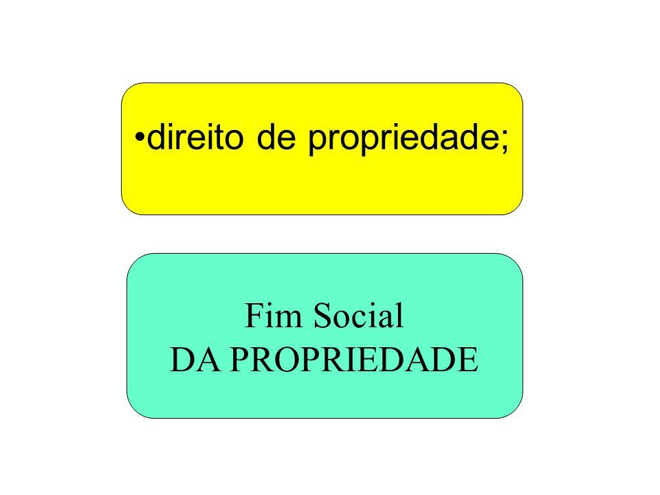 direito de propriedade; Fim Social DA PROPRIEDADE