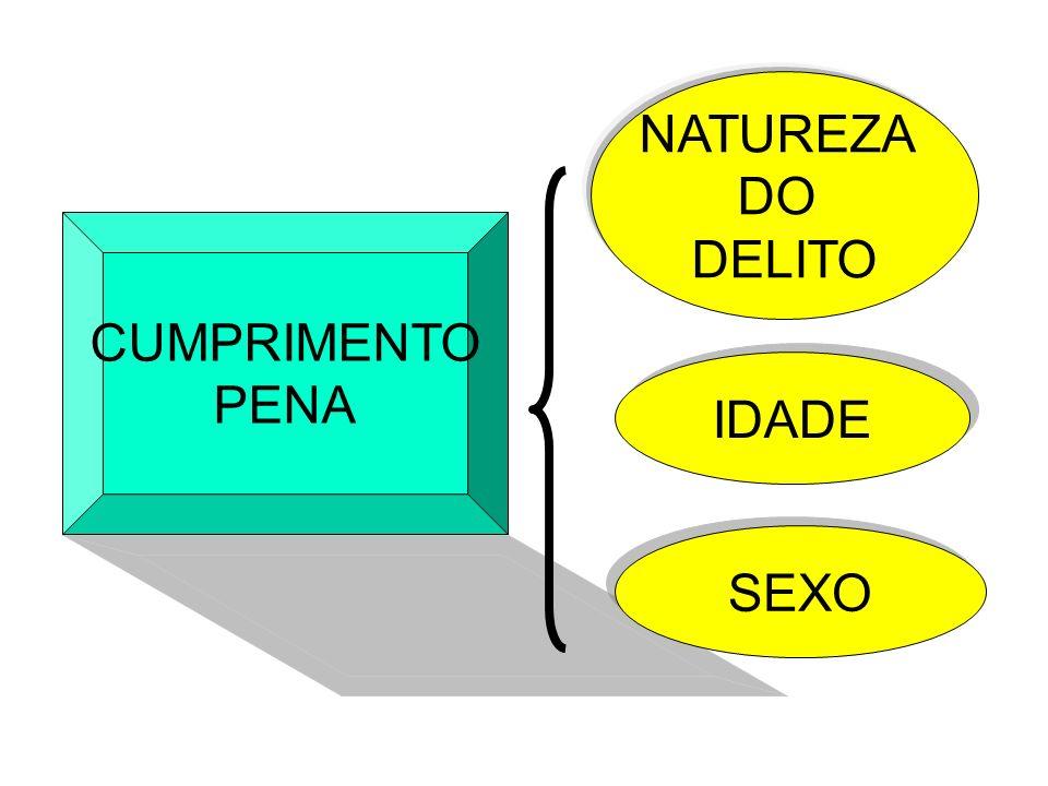 CUMPRIMENTO PENA NATUREZA DO DELITO IDADE SEXO