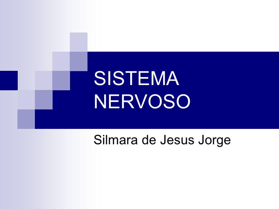 SISTEMA NERVOSO Silmara de Jesus Jorge