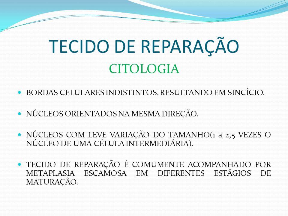 TECIDO DE REPARAÇÃO A RECONSTITUIÇÃO DO TECIDO LESADO DEPOIS DE INJÚRIA DO COLO UTERINO POR IRRITAÇÃO INFLAMATÓRIA, É CHAMADA DE TECIDO DE REPARAÇÃO.