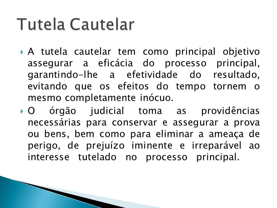 A tutela cautelar tem como principal objetivo assegurar a eficácia do processo principal, garantindo-lhe a efetividade do resultado, evitando que os e