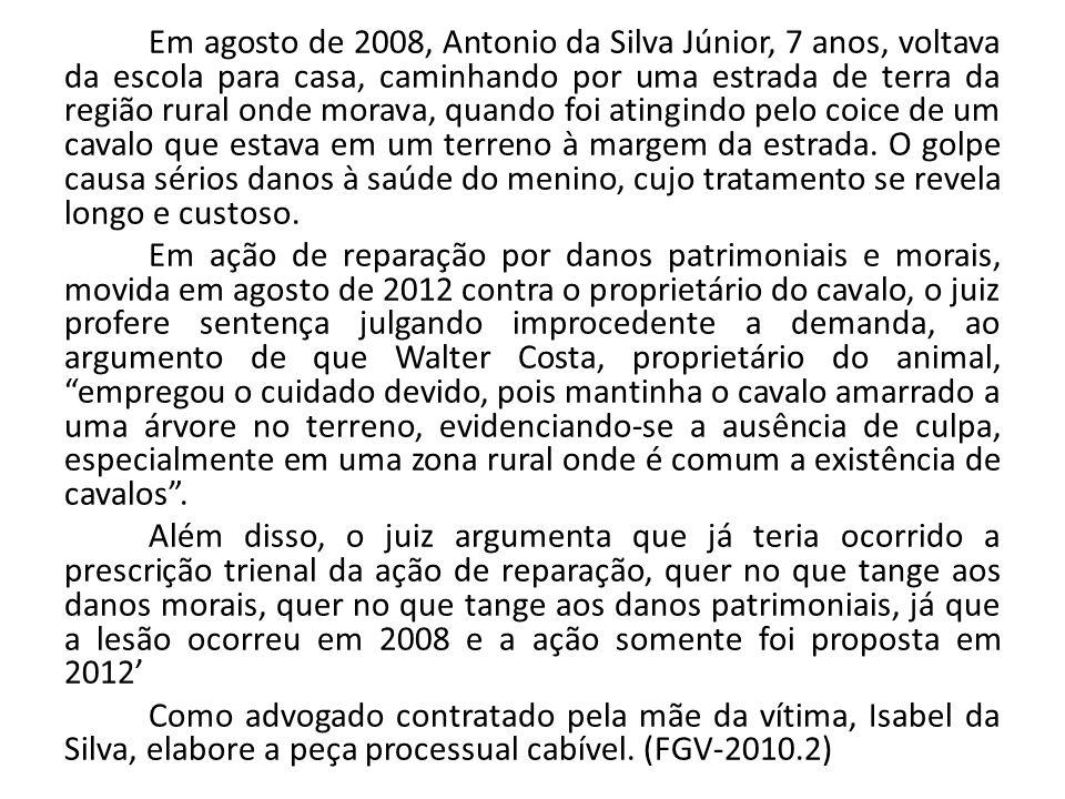 Em agosto de 2008, Antonio da Silva Júnior, 7 anos, voltava da escola para casa, caminhando por uma estrada de terra da região rural onde morava, quan