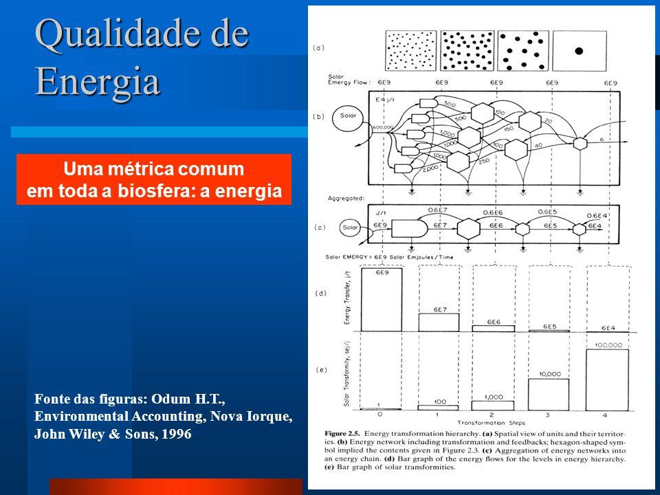 Qualidade de Energia Fonte das figuras: Odum H.T., Environmental Accounting, Nova Iorque, John Wiley & Sons, 1996 Uma métrica comum em toda a biosfera
