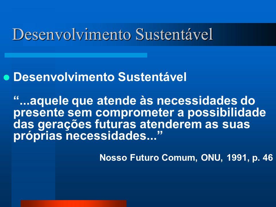 Desenvolvimento Sustentável É possível reduzir em muito o impacto negativo do crescimento econômico na deterioração ambiental...Para que haja sustentabilidade o essencial não é produzir menos, e sim produzir de outra maneira BIRD / Banco Mundial, 1992