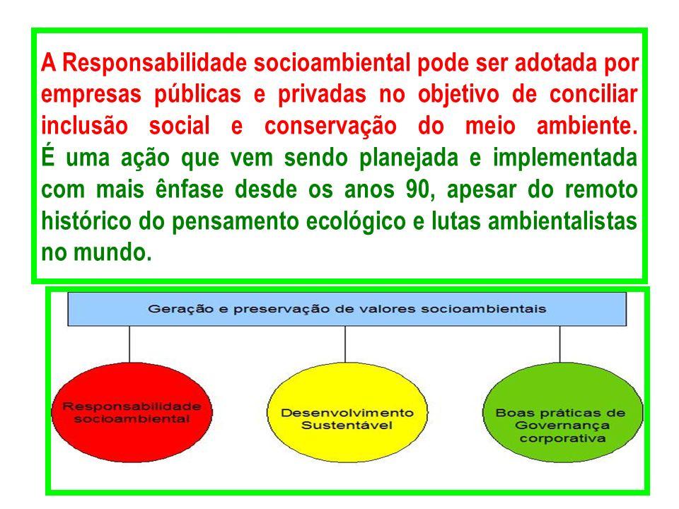 A Responsabilidade socioambiental pode ser adotada por empresas públicas e privadas no objetivo de conciliar inclusão social e conservação do meio amb