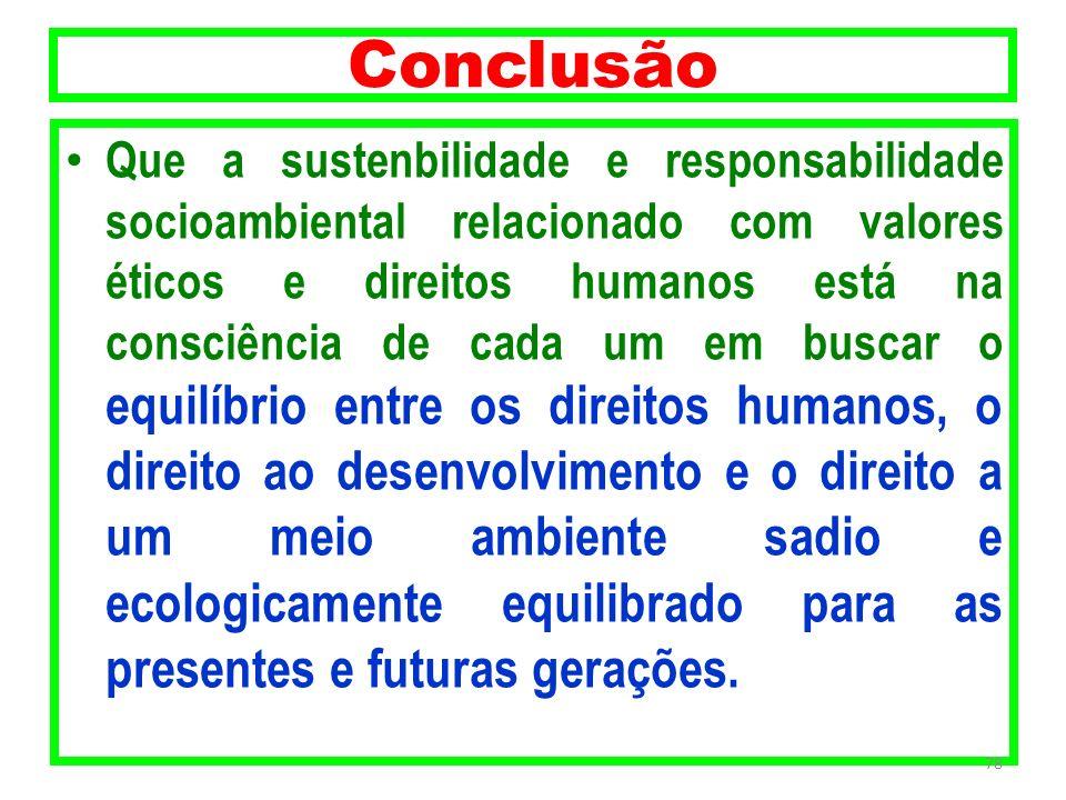Conclusão Que a sustenbilidade e responsabilidade socioambiental relacionado com valores éticos e direitos humanos está na consciência de cada um em b
