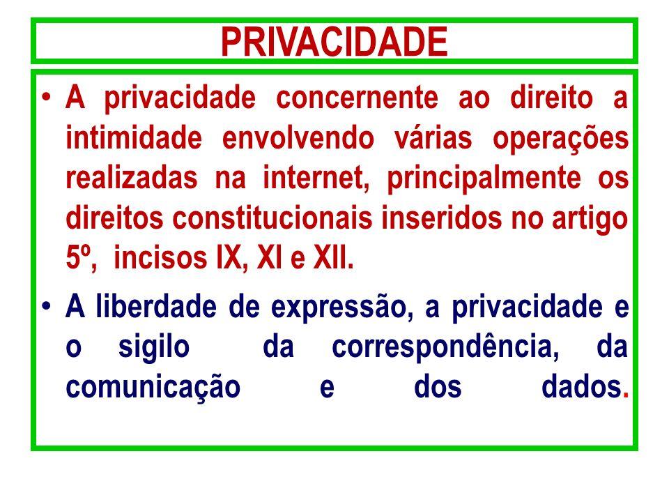 PRIVACIDADE A privacidade concernente ao direito a intimidade envolvendo várias operações realizadas na internet, principalmente os direitos constituc