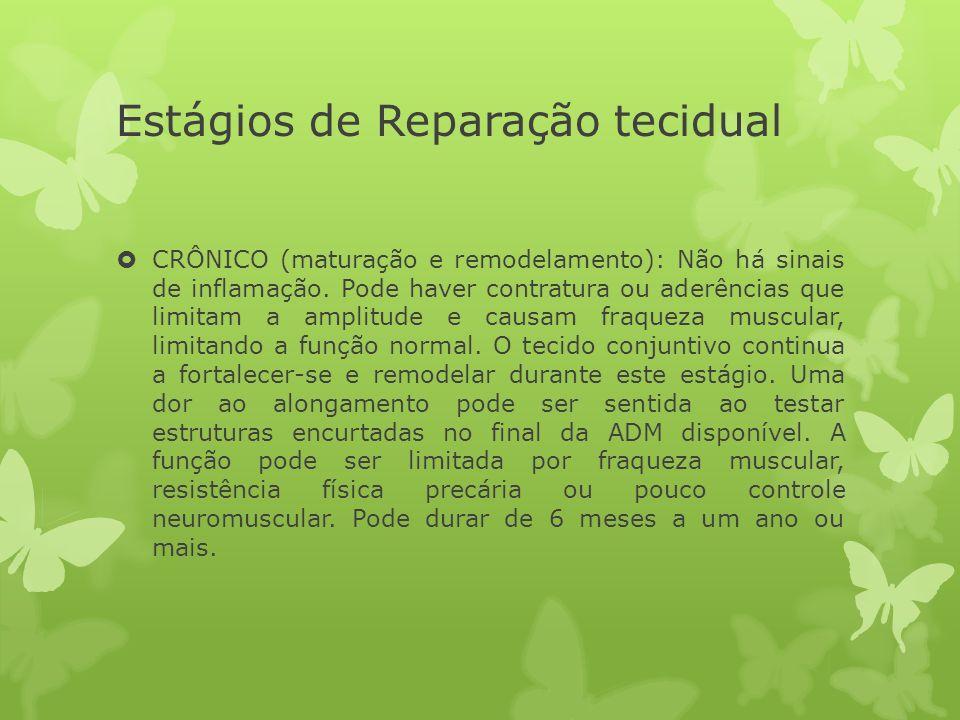 Estágios de Reparação tecidual CRÔNICO (maturação e remodelamento): Não há sinais de inflamação. Pode haver contratura ou aderências que limitam a amp
