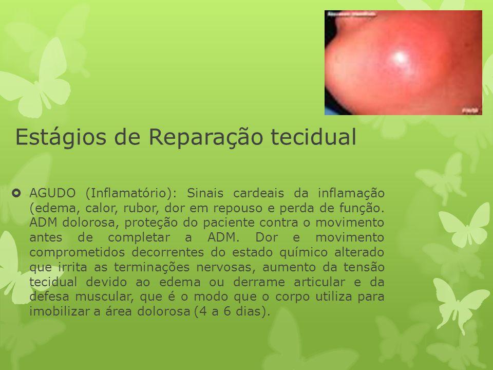 Estágios de Reparação tecidual AGUDO (Inflamatório): Sinais cardeais da inflamação (edema, calor, rubor, dor em repouso e perda de função. ADM doloros