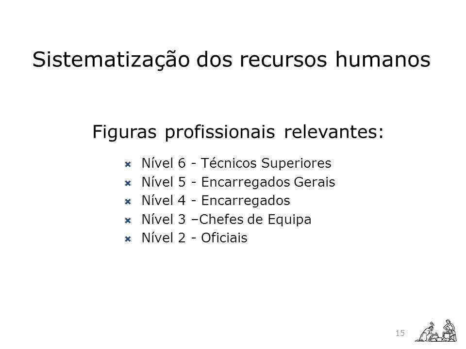 Sistematização dos recursos humanos Figuras profissionais relevantes: Nível 6 - Técnicos Superiores Nível 5 - Encarregados Gerais Nível 4 - Encarregad