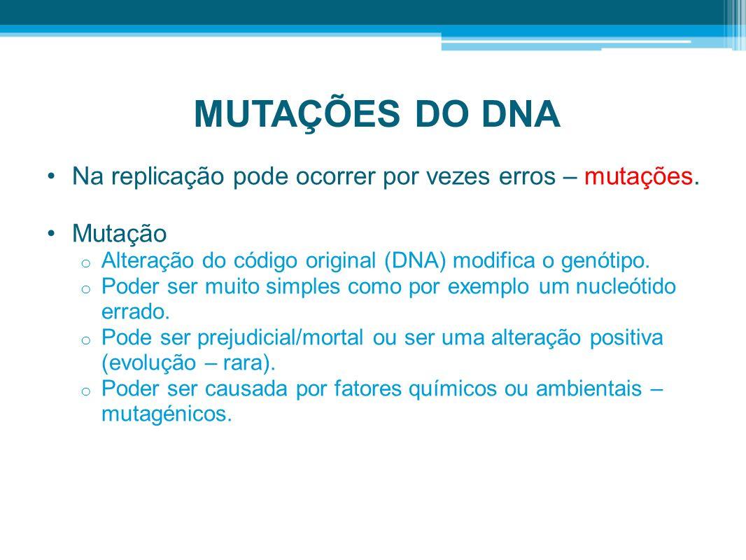 MUTAÇÕES DO DNA Na replicação pode ocorrer por vezes erros – mutações. Mutação o Alteração do código original (DNA) modifica o genótipo. o Poder ser m