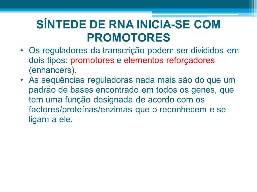 SÍNTEDE DE RNA INICIA-SE COM PROMOTORES Os reguladores da transcrição podem ser divididos em dois tipos: promotores e elementos reforçadores (enhancer