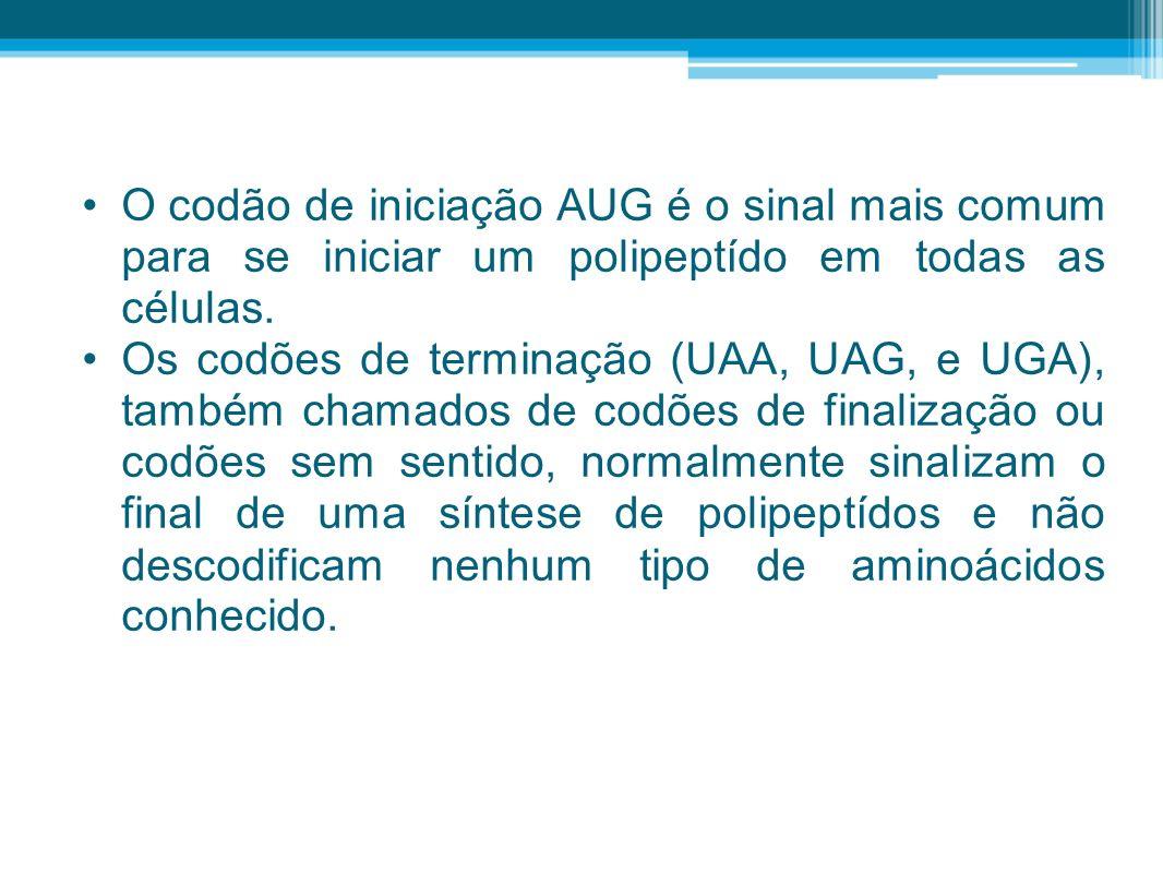 O codão de iniciação AUG é o sinal mais comum para se iniciar um polipeptído em todas as células. Os codões de terminação (UAA, UAG, e UGA), também ch