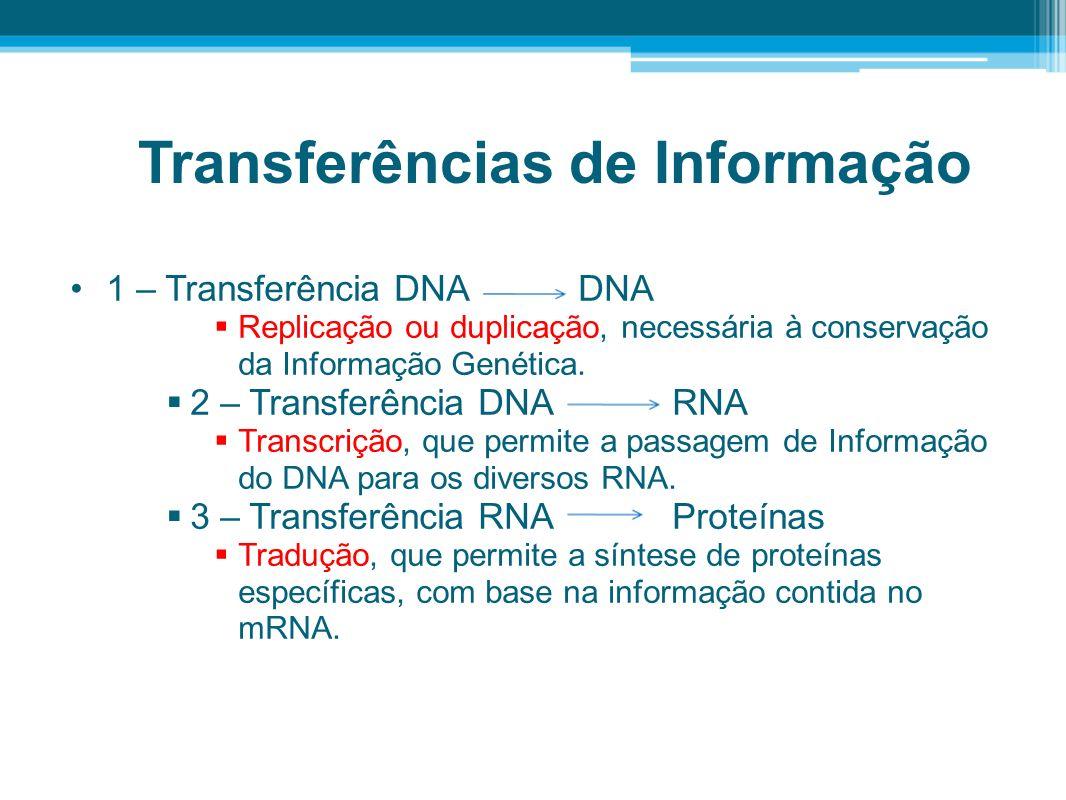 4 – Transferência RNA RNA o Síntese de RNA ( comportamento viral).