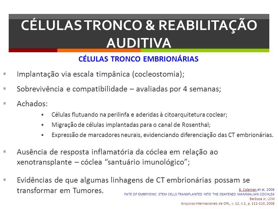 CÉLULAS TRONCO EMBRIONÁRIAS Implantação via escala timpânica (cocleostomia); Sobrevivência e compatibilidade – avaliadas por 4 semanas; Achados: Célul