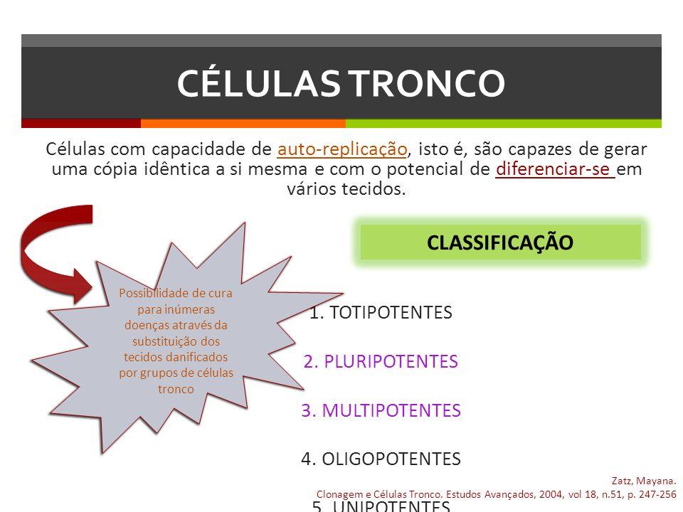 CLASSIFICAÇÃO DAS CÉLULAS TRONCO 1.