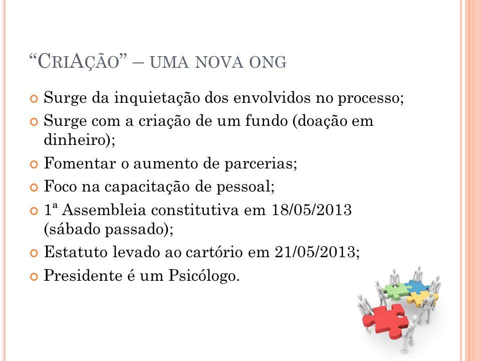 C RI A ÇÃO – UMA NOVA ONG Surge da inquietação dos envolvidos no processo; Surge com a criação de um fundo (doação em dinheiro); Fomentar o aumento de parcerias; Foco na capacitação de pessoal; 1ª Assembleia constitutiva em 18/05/2013 (sábado passado); Estatuto levado ao cartório em 21/05/2013; Presidente é um Psicólogo.