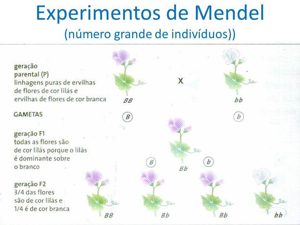 Experimentos de Mendel (número grande de indivíduos))