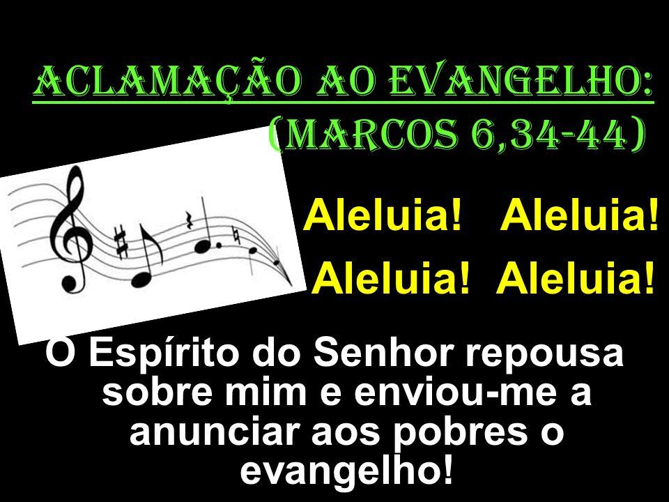 ACLAMAÇÃO AO EVANGELHO: (MaRCOS 6,34-44) Aleluia! Aleluia! O Espírito do Senhor repousa sobre mim e enviou-me a anunciar aos pobres o evangelho!
