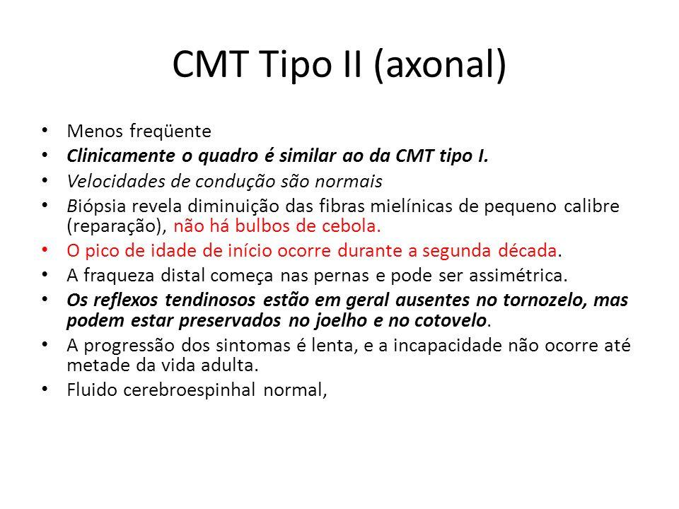 CMT Tipo II (axonal) Menos freqüente Clinicamente o quadro é similar ao da CMT tipo I. Velocidades de condução são normais Biópsia revela diminuição d