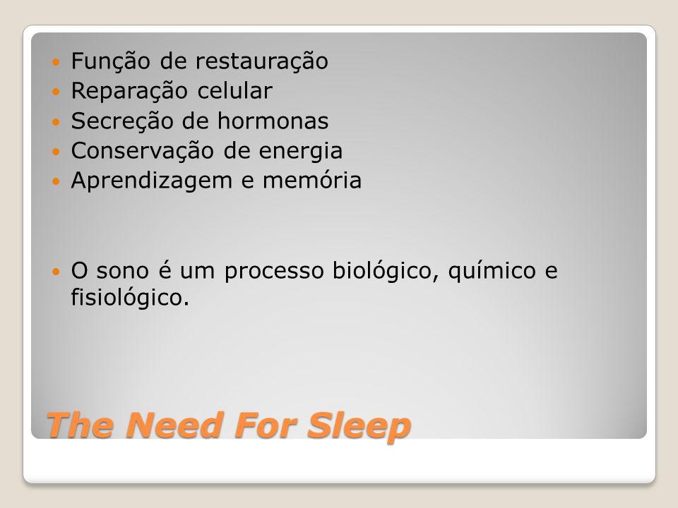 The Need For Sleep Função de restauração Reparação celular Secreção de hormonas Conservação de energia Aprendizagem e memória O sono é um processo bio