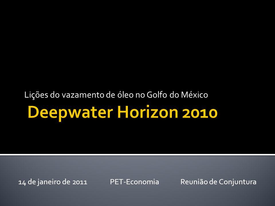 Lições do vazamento de óleo no Golfo do México 14 de janeiro de 2011 PET-Economia Reunião de Conjuntura