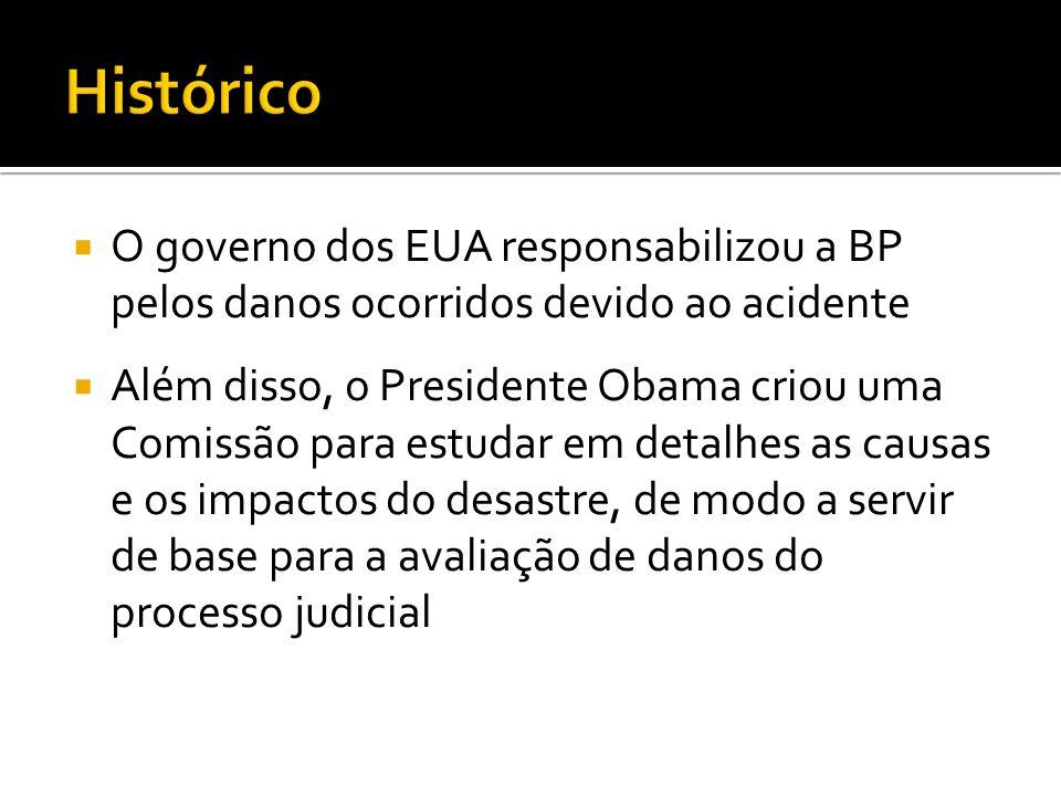 O governo dos EUA responsabilizou a BP pelos danos ocorridos devido ao acidente Além disso, o Presidente Obama criou uma Comissão para estudar em deta