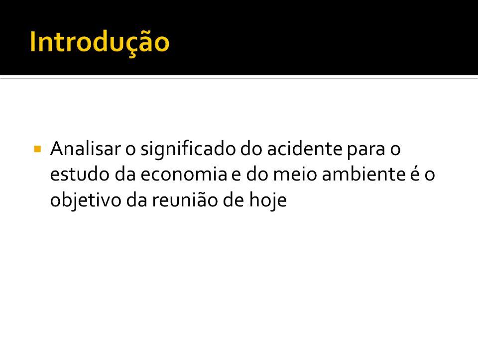Analisar o significado do acidente para o estudo da economia e do meio ambiente é o objetivo da reunião de hoje