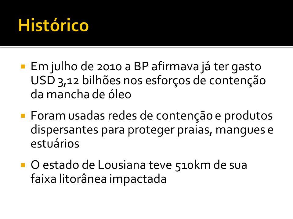 Em julho de 2010 a BP afirmava já ter gasto USD 3,12 bilhões nos esforços de contenção da mancha de óleo Foram usadas redes de contenção e produtos di