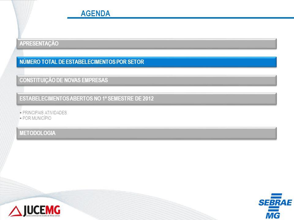 AGENDA APRESENTAÇÃO NÚMERO TOTAL DE ESTABELECIMENTOS POR SETOR CONSTITUIÇÃO DE NOVAS EMPRESAS ESTABELECIMENTOS ABERTOS NO 1º SEMESTRE DE 2012 PRINCIPA