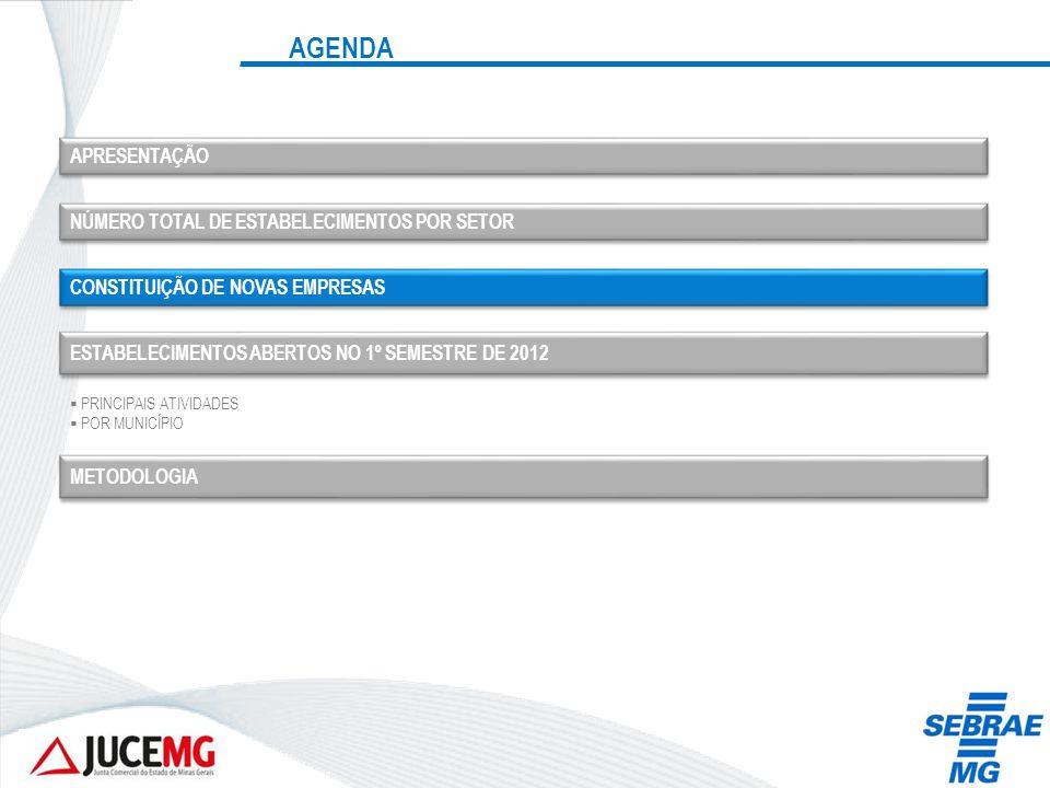 CONSTITUIÇÃO DE NOVAS EMPRESAS Fonte: JUCEMG Obs.: Dados até 30/06/2012