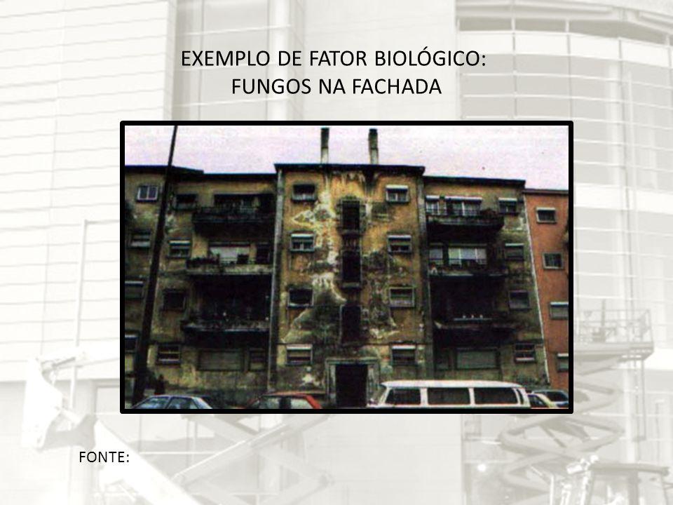 FONTE: EXEMPLO DE FATOR BIOLÓGICO: FUNGOS NA FACHADA