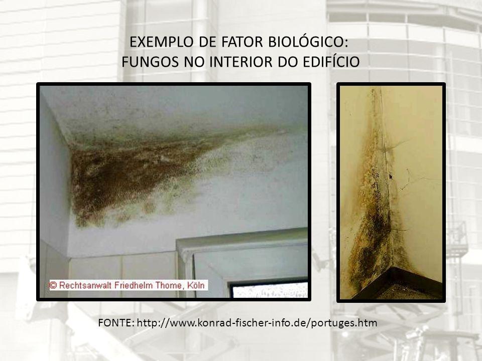 FONTE: http://www.konrad-fischer-info.de/portuges.htm EXEMPLO DE FATOR BIOLÓGICO: FUNGOS NO INTERIOR DO EDIFÍCIO