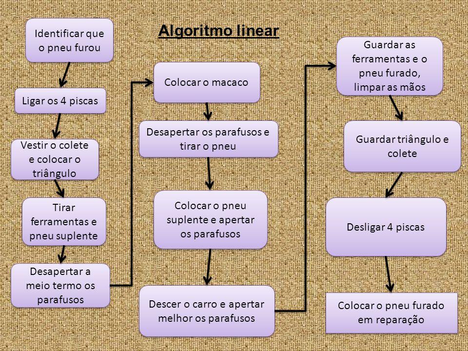 sim não Algoritmo não linear