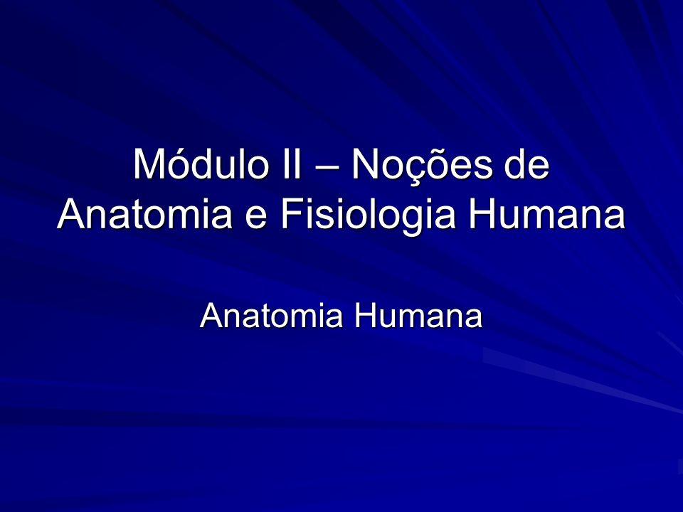Módulo II – Noções de Anatomia e Fisiologia Humana Anatomia Humana
