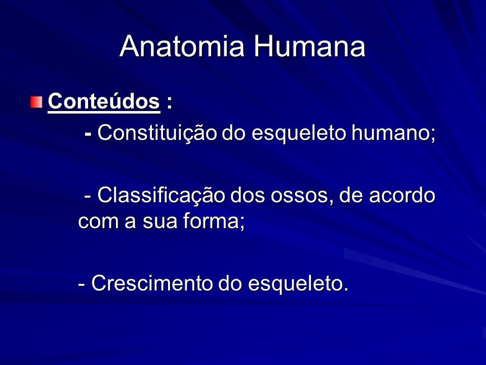 Conteúdos : - Constituição do esqueleto humano; - Constituição do esqueleto humano; - Classificação dos ossos, de acordo com a sua forma; - Classifica