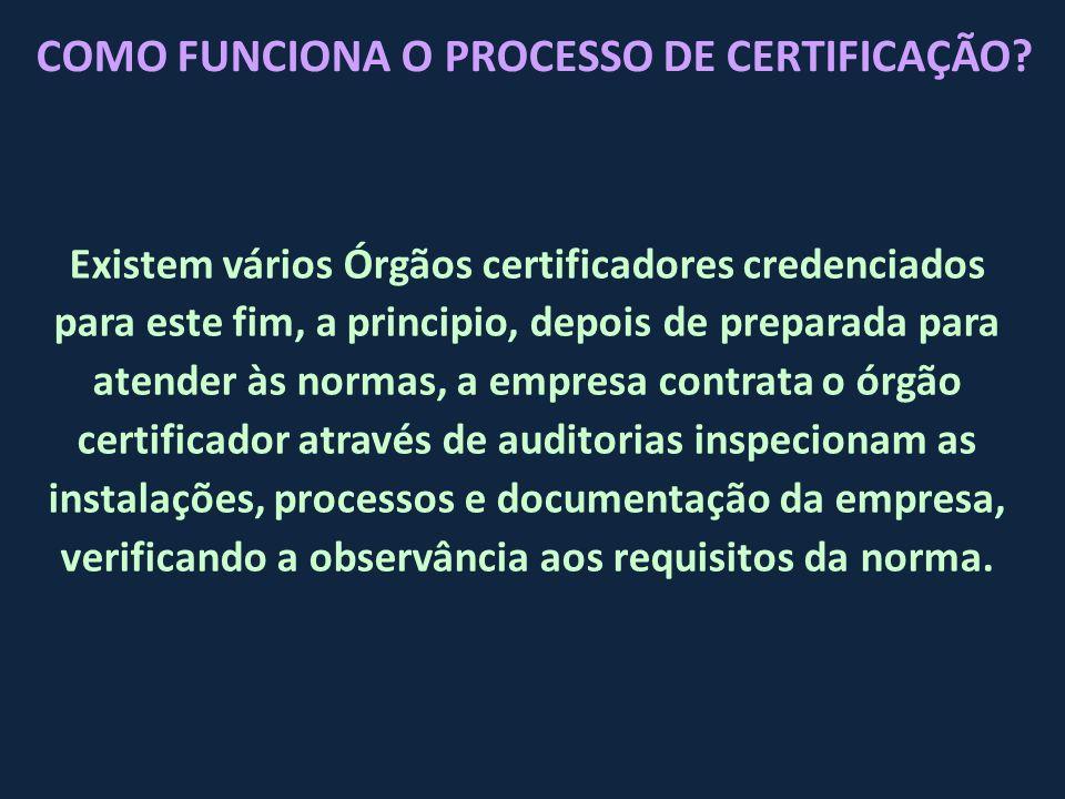 Existem vários Órgãos certificadores credenciados para este fim, a principio, depois de preparada para atender às normas, a empresa contrata o órgão c