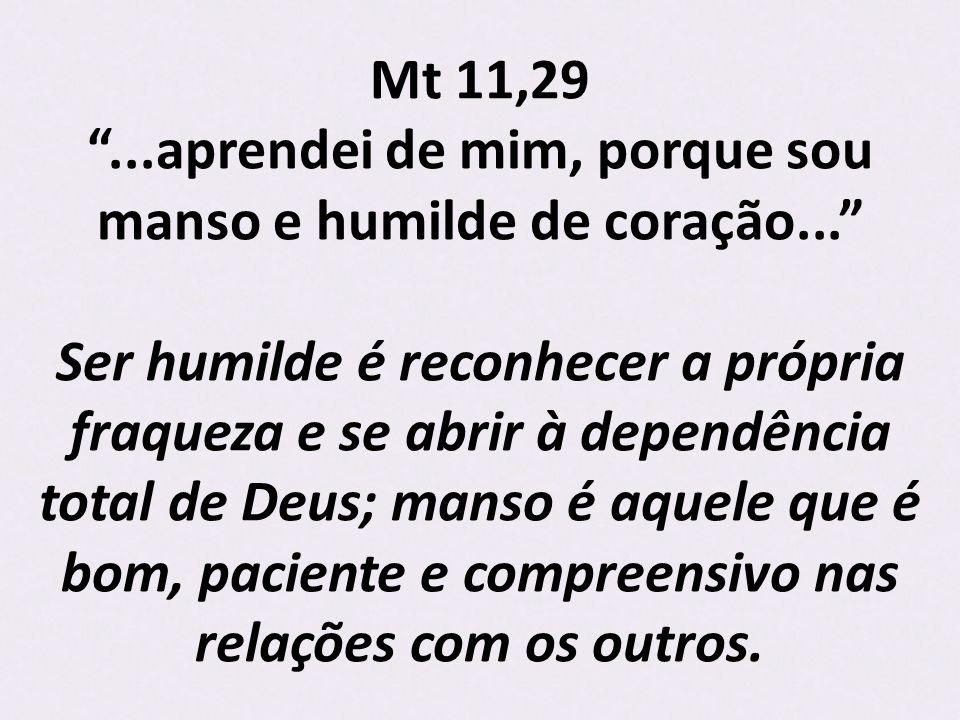 Mt 11,29...aprendei de mim, porque sou manso e humilde de coração...