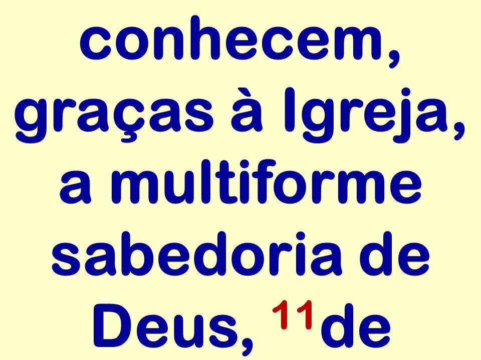 conhecem, graças à Igreja, a multiforme sabedoria de Deus, 11 de